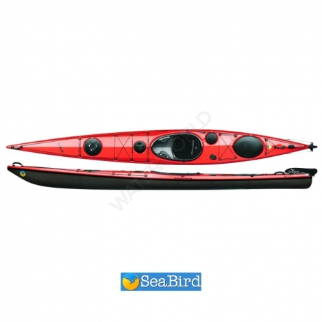SeaBird Expedition XP 480 (Carbon) - red